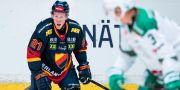 Engqvist i sin sista match i Djurgårdströjan. JONATHAN NÄCKSTRAND / BILDBYRÅN