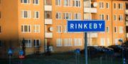 Illustrationsbild, Rinkeby. Janerik Henriksson/TT / TT NYHETSBYRÅN