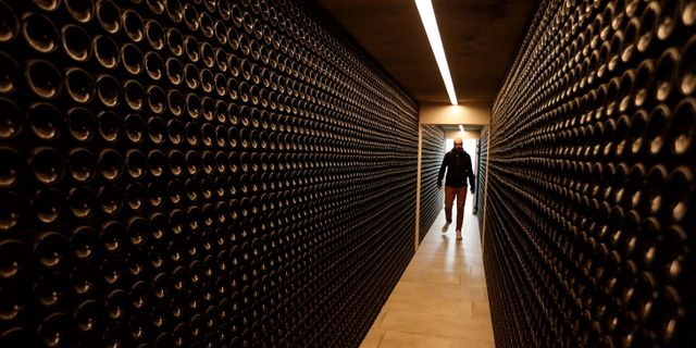 Illustrationsbild: Vinflaskor på rad i en vinkällare i Chateau Le Ouy i Saint Cibard, Frankrike.  REGIS DUVIGNAU / TT NYHETSBYRÅN