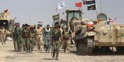 Irakiska styrkor tillsammans med paramilitära Hashed al-Shaabi, arkivbild. AHMAD AL-RUBAYE / AFP