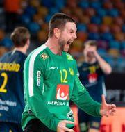 Andreas Palicka MATHIAS BERGELD / BILDBYRÅN