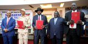 Avtalet skrevs under i Sydsudan. JOK SOLOMUN / TT NYHETSBYRÅN