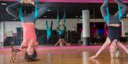 Bild på yogainstruktörer på ett Sats-gym.  Erik Nylander/TT / TT NYHETSBYRÅN