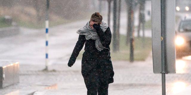 Illustrationsbild. Motvind och regn i Malmö i går. Johan Nilsson/TT / TT NYHETSBYRÅN