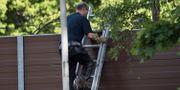 Polisens tekniker på platsen där en död kvinna hittades i stadsdelen Hjärsta i Örebro på lördags eftermiddagen. Niklas Lindahl / TT / TT NYHETSBYRÅN