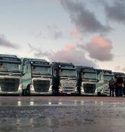 Arkivbild: Volvolastbilar BJÖRN LARSSON ROSVALL / TT / TT NYHETSBYRÅN