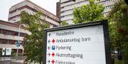 Skånes universitetssjukhus Emil Langvad/TT / TT NYHETSBYRÅN