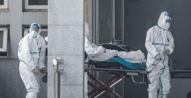 Medicinsk personal i skyddsutrustning transporterar en patient som tros ha insjuknat i sjukdomen.  STR / AFP