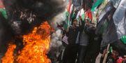 Palestinier protesterar mot Trumps väntade fredsplan.  MAHMUD HAMS / AFP