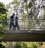 Den gångbro där skotten avlossades. Christine Olsson/TT / TT NYHETSBYRÅN