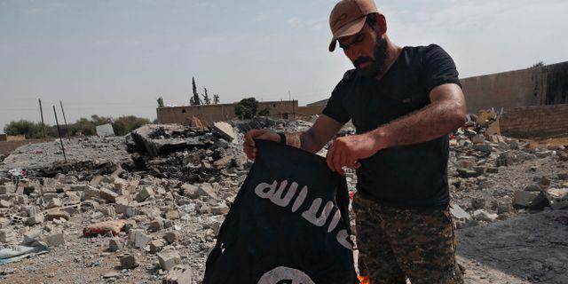 En soldat i USA-stödda Syrian Democratic Forces, bränner en IS-flagga väster om Raqqa. Hussein Malla / TT NYHETSBYRÅN/AP