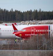 Norwegianplan på Arlanda Johan Nilsson/TT / TT NYHETSBYRÅN