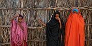 Flickor i flycktinglägred Dadaab. Ben Curtis / TT NYHETSBYRÅN/ NTB Scanpix