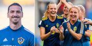 Zlatan/Sverige. Bildbyrån