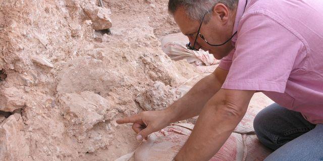 Forskaren Jean-Jacques Hublin visar fyndet i Marocko. Shannon McPherron / TT NYHETSBYRÅN