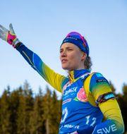 Hanna Öberg vid torsdagens världscupssprint. NORDICFOCUS / BILDBYRÅN