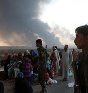 Människor flyr från striderna mellan terrorgruppen IS och irakiska säkerhetsstyrkor. Uncredited / TT / NTB Scanpix