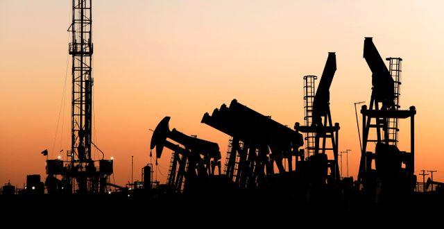 Arkivbild: Oljepumpar i Texas, USA Eli Hartman / TT NYHETSBYRÅN