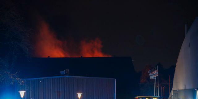 Branden vid Friidottens hus Adam Ihse/TT / TT NYHETSBYRÅN
