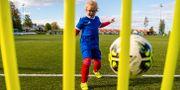 Illustrationsbild. En flicka tränar fotboll. VEGARD WIVESTAD GRØTT / BILDBYRÅN NORWAY