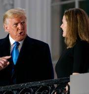 Donald Trump och Amy Coney Barrett. Patrick Semansky / TT NYHETSBYRÅN