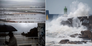 Översvämmade  fält iXinzo de Limia /en man vid översvämmade Minofloden i Ourense / vågor slår mot hamnen A Guara.  AFP