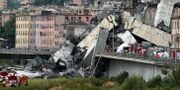 Den kollapsade bron.  Stefano Rellandini / TT NYHETSBYRÅN