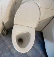 Illustrationsbild, toalett. JESSICA GOW / TT / TT NYHETSBYRÅN