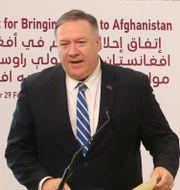 Mike Pompeo i Doha när fredsavtalet med talibanerna skrevs under i februari/Arkivbild. Hussein Sayed / TT NYHETSBYRÅN