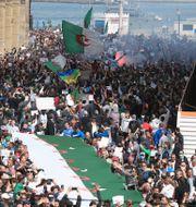 Hirak-rörelsens protester tidiagre i år. Fateh Guidoum / TT NYHETSBYRÅN