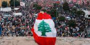 Demonstranter mot regeringen hösten 2019 Mohamed Azakir / TT NYHETSBYRÅN