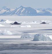 Arkivbild. Antarktis. / ASSOCIATED PRESS / TT / TT NYHETSBYRÅN