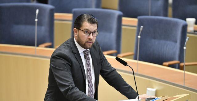 Jimmie Åkesson. Henrik Montgomery/TT / TT NYHETSBYRÅN