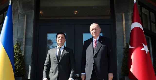 Ukrainas president Volodymyr Zelenskyj och Turkiets president Recep Tayyip Erdogan. TT NYHETSBYRÅN