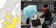 Klass 1-varning för besvärligt väder/arkivbild, blåst TT