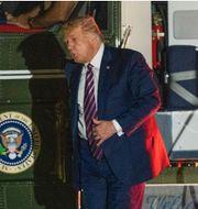 USA:s ambassadör i Sydafrika, lana Marks. Donald Trump. TT
