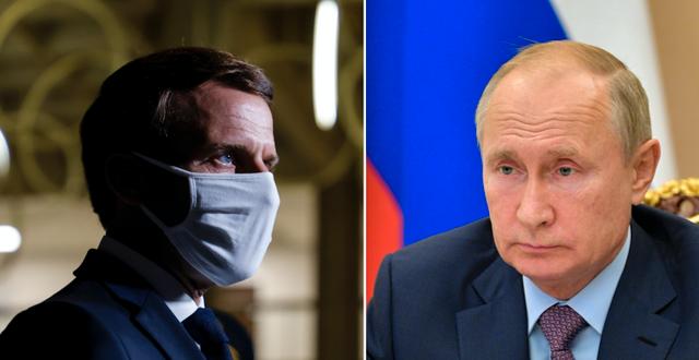 Macron och Putin TT