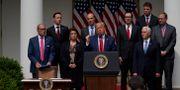 Tomas Philipson stod bakom Donald Trump, längst upp till höger på bilden, under en presskonferens utanför Vita huset i början av juni.  Evan Vucci / TT NYHETSBYRÅN
