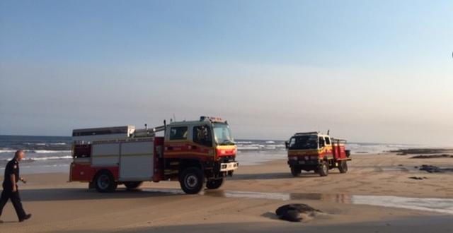 Bild från insatsen på Fraser Island/K'gari Queensland Fire and Emergency Services/Twitter