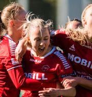 Limhamn jublar efter 2–2-målet. AVDO BILKANOVIC / BILDBYRÅN