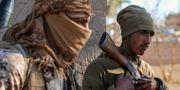 SDF-styrkor. DYLAN COLLINS / AFP