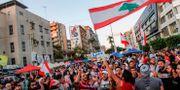 Demonstranter jublar efter Hariris avgång. MAHMOUD ZAYYAT / AFP