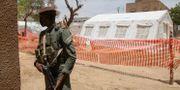En soldat vaktar ett tält för människor som insjuknat i covid-19 i Timbuktu. Baba Ahmed / TT NYHETSBYRÅN