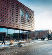 Pressfoto: Linköpings universitet