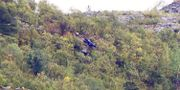 Helikoptervraket i Alta. Terje Pedersen / TT NYHETSBYRÅN