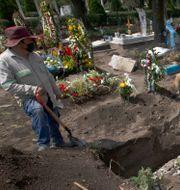 En kyrkogårdsarbetare gräver gravar i San Lorenzo Tezonco Iztapalapa i utkanten av Mexico City. Marco Ugarte / TT NYHETSBYRÅN