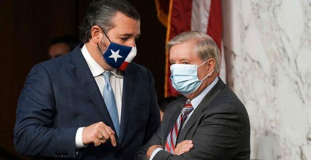 Ted Cruz och Lindsey Graham/Arkivbild Greg Nash / TT NYHETSBYRÅN