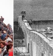 Bild från när Berlinmuren föll 1989 och bild på när östtyska poliser bygger Berlinmuren högre år 1961. TT
