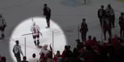 Skärmbild NHL