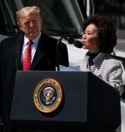 Donald Trump och Elaine Chao. Evan Vucci / TT NYHETSBYRÅN